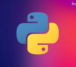 Python Programming for Developers MOSH