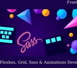 The Modern Flexbox, Grid, Sass & Animations Developer Course