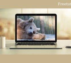 Hibernate Advanced Development Techniques Free Download