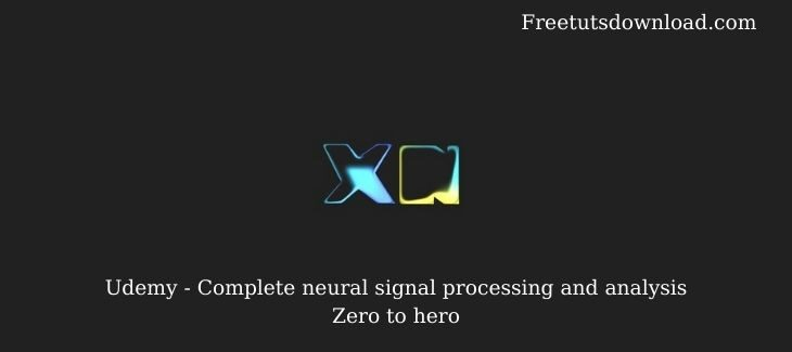 Udemy - Complete neural signal processing and analysis Zero to hero