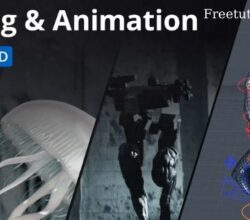 Motion Design School - Rigging and Animation in Cinema 4D