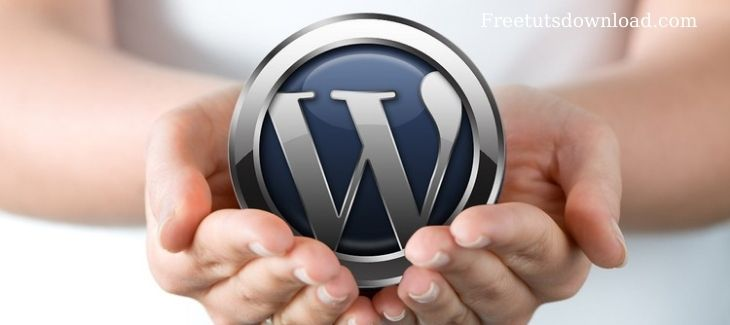 WordPress Make A Professional Website With No Coding
