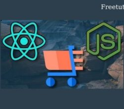 Build a Shopping Cart App with React, Node, and Stripe