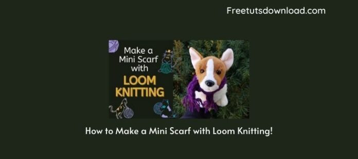 How to Make a Mini Scarf with Loom Knitting!