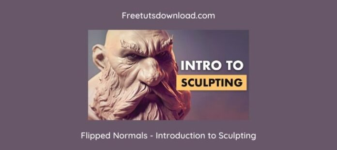 Flipped Normals - Introduction to Sculpting