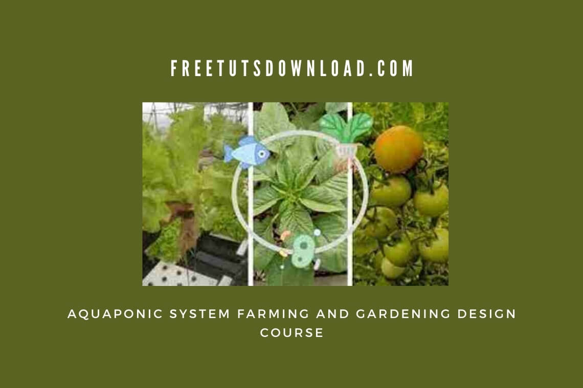 Aquaponic-System-Farming-and-Gardening-Design-Course.jpg